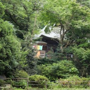 武蔵野の静けさと緑に包まれて