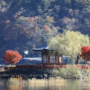時季の移ろい *河口湖*