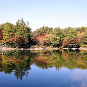 紅葉が彩る日本庭園 Ⅲ