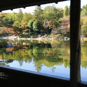 日本庭園の逆さ紅葉