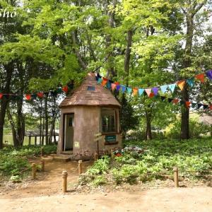 森の小さな家 *昭和記念公園風景