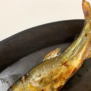鬼怒川の鮎で鮎飯 鮎そうめん 塩焼き