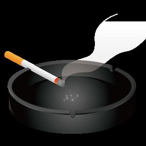 タバコ代の節約に成功! ~ ヴェポライザー C-vapor3