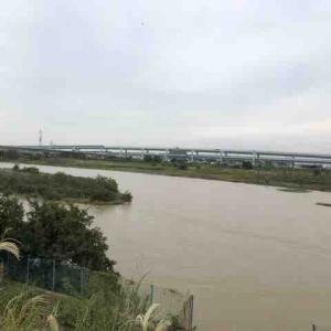 台風後の相模川 いよいよ落ち鮎パターンも