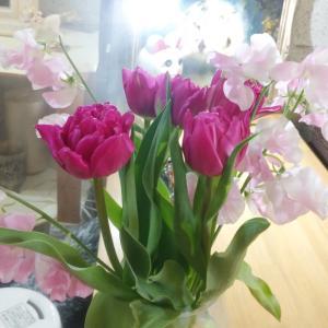 カウンターの花を変えました