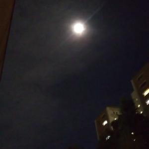 もうすぐ満月の月