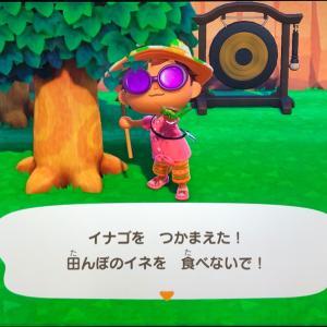 あつまれどうぶつの森 139日目 &ポケモン剣