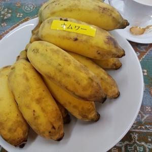 珍しいバナナ