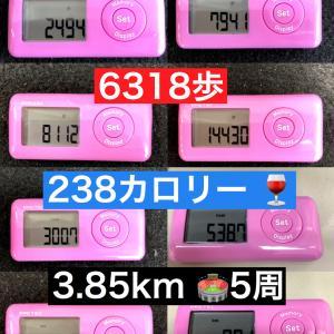 健康と運動の関係 1回のダンスレッスンの歩数・消費カロリー・距離を検証