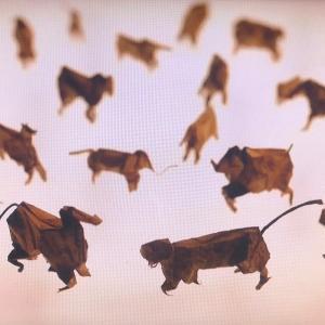 折り葉の動物たち