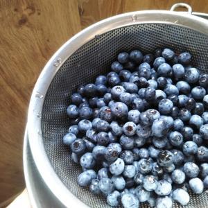ブルーベリーを冷凍保存してからジャムにする方法(レシピ)