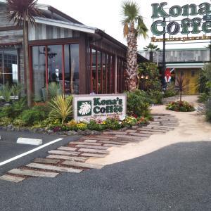 つくば市の人気カフェ 初めてコナズ珈琲でランチしました