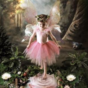 精霊界の贈り物(女性性の開放の扉へ)愛スクリーム屋さん(チャネリング)