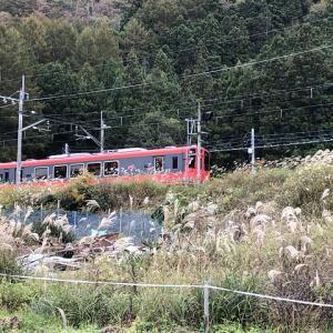 電車でGO!バックパックでソロキャンプ【みよりふるさと体験村】