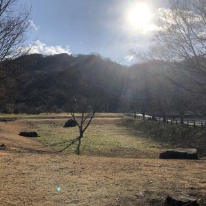 トリプルカンガルーからのブチ切れキャンプ・出会いの森【後編】