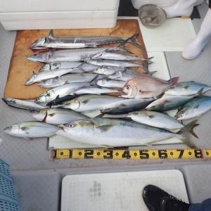 昨日は、加奈丸の新しい仲間と4人で船釣りに行きました。結果は・・・・