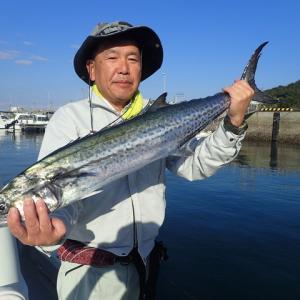 今日は、西風が強いので加奈丸での釣りには行けませんでした。そこで11月の釣果をまとめてみました。