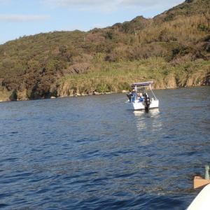 金曜日に泳がせ釣り行きましたが、ヤズが1匹しか釣れませんでした。・・・(´;ω;`)ウゥゥ