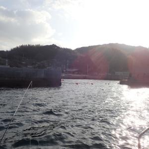 加奈丸での最後の釣りに行ってきました。少し状況をなめすぎていました。結果はボウズでした。(´;ω;`)ウゥゥ