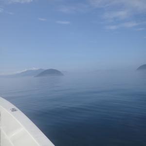 8日振りに加奈丸Ⅱで船釣りに行きました。結果はまあまあでした。
