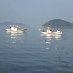 家の前のおじさんに船釣りをしたいと頼まれアジを釣り行ってみましたが、惨敗でした。・・・(´;ω;`)ウゥゥ