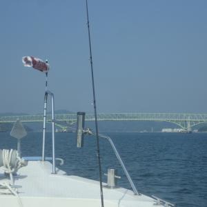 週末は天気が崩れそうなので、急遽妻を誘って加奈丸Ⅱで釣行しました。結果は大惨敗でした。(´;ω;`)ウゥゥ