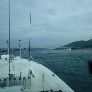久しぶりに加奈丸Ⅱで船釣り来ました。出港前から問題が発生し、釣果にも恵まれませんでした。・・・(´;ω;`)ウゥゥ