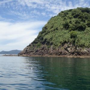 ヤズを狙って平郡島の櫛崎に行ってきました。結果はヤズは釣れませんでした。(´;ω;`)ウゥゥ