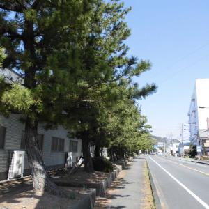 東海道第二弾2日目(1)藤枝宿~岡部宿