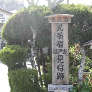 東海道第二弾2日目(3)丸子宿~府中宿~ホテル?