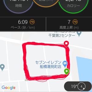86回目フル以上(?)の日記 船橋三番瀬