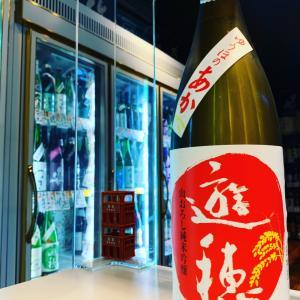 遊穂 生酛純米吟醸 生原酒!