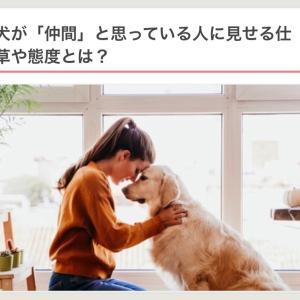 """""""仲間""""⁉️""""家族""""⁉️そーだよねぇってお話❣️"""