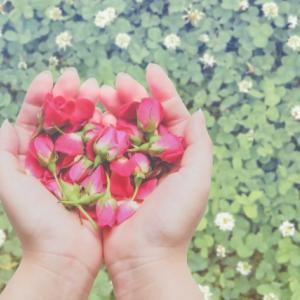 心と身体からの合図を敏感に感じ取ることは、自分を大事にする一歩なのかもしれません