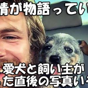 表情が物語っている…愛犬と飼い主が出会った直後の写真いろいろ