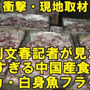 【衝撃・現地取材】週刊文春記者が見た!『危険すぎる中国産食品』#2 ※イカ・白身魚フライ編