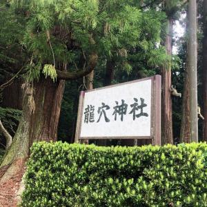 強烈なパワーの龍穴神社