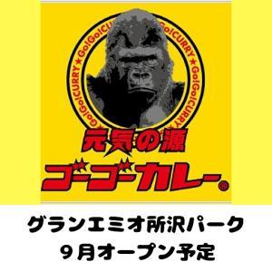 【開店情報】ゴーゴーカレーがグランエミオ所沢パークに9月オープン予定【元気の源】