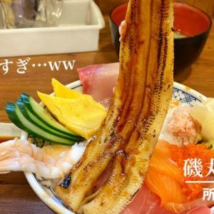 所沢【居酒屋】磯丸水産の穴子が長~い海鮮こぼれ丼と海ぶどうを堪能!