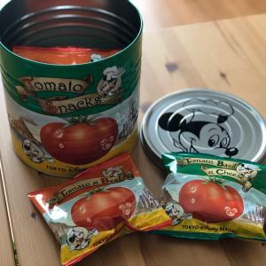 ディズニーのおみやげ缶で、おしゃれな寄せ植えが作れる!