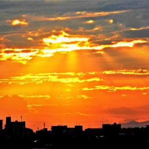 東京の神々しい【落陽】光景