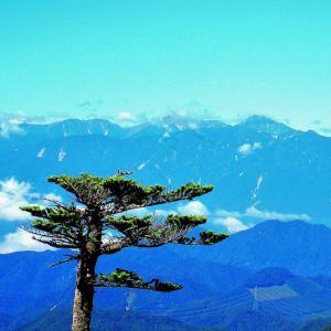 〖国師岳〗稜線上より望む…《南アルプス連峰》