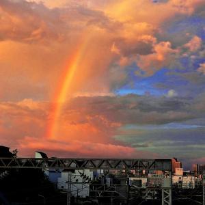 朝焼けと【ダブル虹】光景❢❢