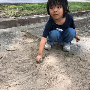 もうすぐ息子の小学校がはじまる。emiemi家の濃い一日【後編】