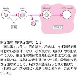 入院【神経内科④】2020/5/29〜