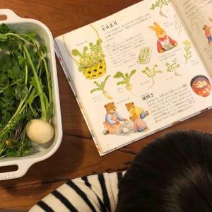 3歳3ヵ月、無病息災を祈り「七草粥」作り