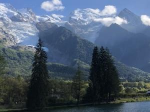 スイスアルプス旅行