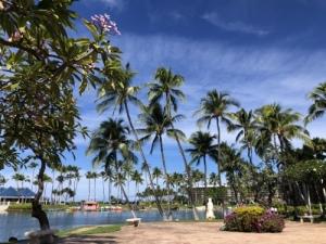 ハワイへ~