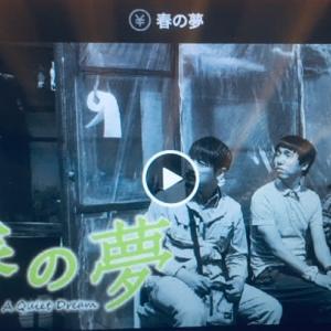 春の夢(2016年 韓国) タブレット劇場