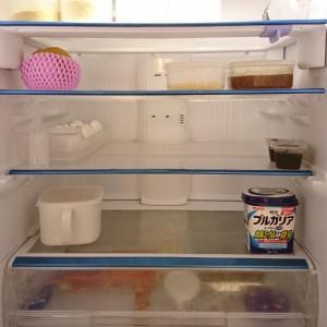 お買い物前の冷蔵庫とお買い物。